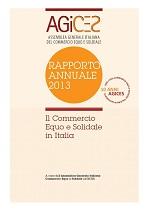 report AGICES 2013 - copertina